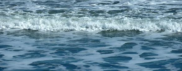 Xerrada: Beneficis de la hidroteràpia de còlon amb aigua de mar